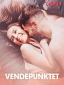 Vendepunktet – erotiske noveller