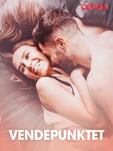 Vendepunktet – erotiske noveller (ebok) av Cu