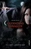 Nattens hus #12: Gudindens udvalgte