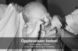 Opplevelsen fødsel – et mangfold av historier