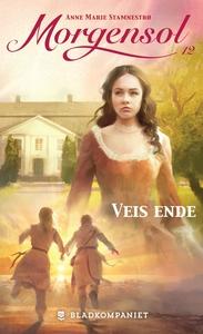 Veis ende (ebok) av Anne Marie Stamnestrø