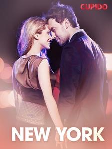 New York – erotiske noveller (ebok) av Cupido