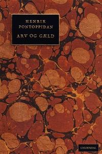 Arv og gæld (e-bog) af Henrik Pontopp