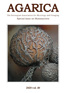 Agarica (pdf-format):  Special issue on slime