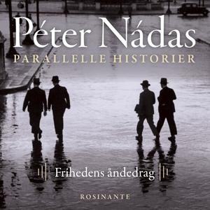 Parallelle historier 3 (lydbog) af Pé
