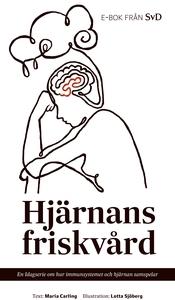 Hjärnans friskvård (e-bok) av Maria Carling