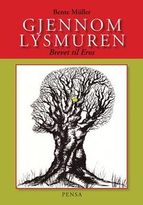 Gjennom Lysmuren (ebok) av Bente Müller
