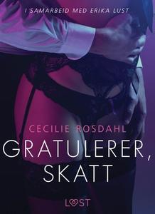 Gratulerer, skatt - en erotisk novelle (ebok)