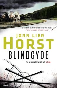 Blindgyde (e-bog) af Jørn Lier Horst