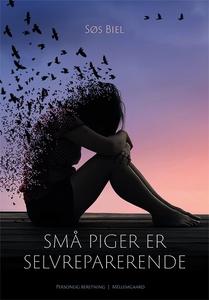 Små piger er selvreparerende (e-bog)