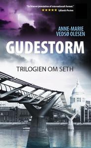 Gudestorm (e-bog) af Anne-Marie Vedsø