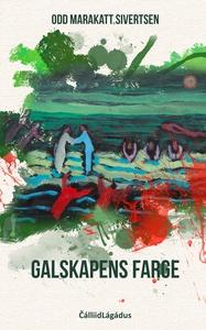 Galskapens farge (ebok) av Odd Marakatt Siver