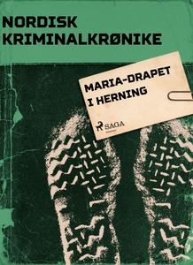 Maria-drapet i Herning (ebok) av Diverse forf