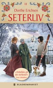 Vinterdager (ebok) av Dorthe Erichsen
