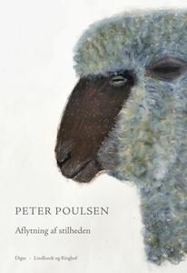 Aflytning af stilheden (e-bog) af Pet