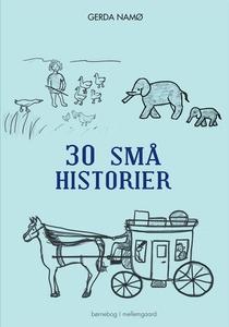 30 små historier (e-bog) af Gerda Na