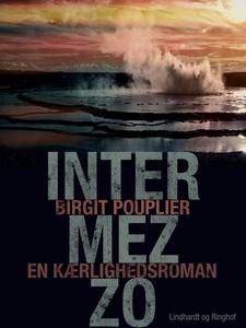 Intermezzo. En kærlighedsroman (e-bog