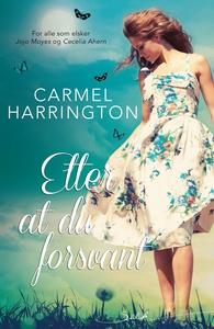 Etter at du forsvant (ebok) av Carmel Harring