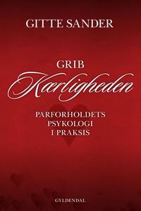 Grib kærligheden (e-bog) af Gitte San