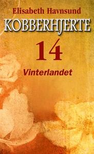 Vinterlandet (ebok) av Elisabeth Havnsund