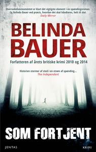 Som fortjent (e-bog) af Belinda Bauer