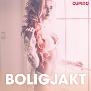 Boligjakt - erotiske noveller (lydbok) av - C
