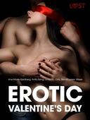 Erotic Valentine's Day - 6 erotiske historier