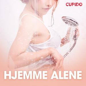 Hjemme alene - erotiske noveller (lydbok) av