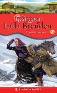 Gjennom sorgen (ebok) av Laila Brenden