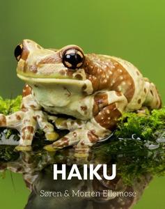 HAIKU (e-bog) af Søren Ellemose, Mort
