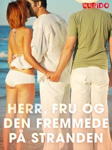Herr, fru og den fremmede på stranden (ebok)