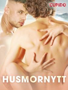 Husmornytt (ebok) av Cupido noveller
