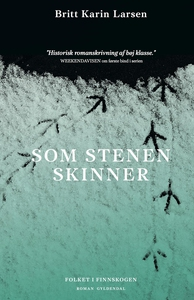 Som stenen skinner (e-bog) af Britt K