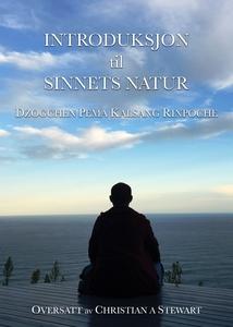 Introduksjon til sinnets natur (ebok) av Dzog