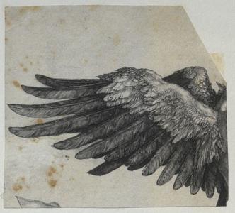 Falt en liten blåfugl (ebok) av Jostein Sand