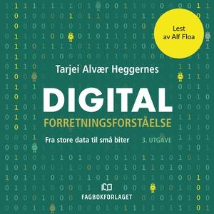 Digital forretningsforståelse (lydbok) av Tar