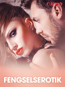 Fengselserotik – erotisk novelle (ebok) av Cu