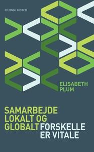 Samarbejde lokalt og globalt (e-bog)