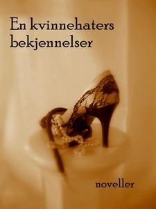 En Kvinnehaters Bekjennelser (ebok) av Sissel