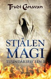 Tusindårsreglen #1: Stjålen magi (e-b