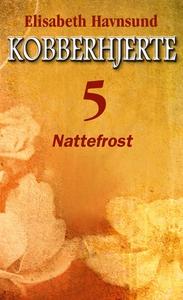 Nattefrost (ebok) av Elisabeth Havnsund
