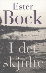 I det skjulte (e-bog) af Ester Bock