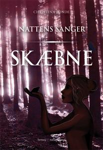 Skæbne - Nattens Sanger (e-bog) af Ch
