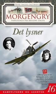 Morgengry 16 – Det lysner (ebok) av Rune Ange