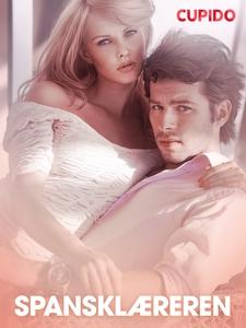 Spansklæreren – erotiske noveller (ebok) av C