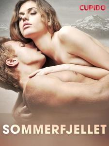 Sommerfjellet (ebok) av Cupido noveller