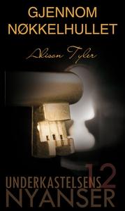 Gjennom nøkkelhullet (ebok) av Alison Tyler