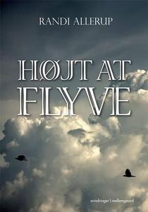 Højt at flyve (e-bog) af Randi Alleru