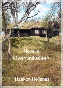 Overraskelsen (ebok) av Haakon Hellenes