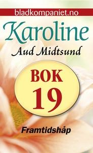 Framtidshåp (ebok) av Aud Midtsund